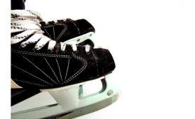 0218-skates