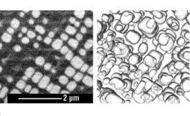Single-slice image from a Ni-Cr-Al superalloy